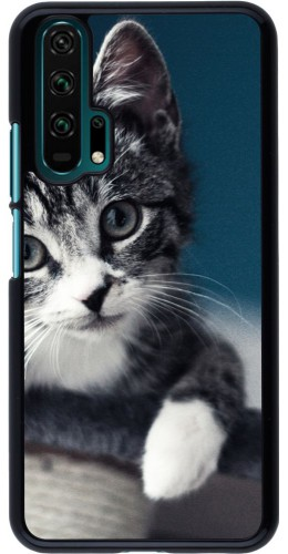 Coque Honor 20 Pro - Meow 23