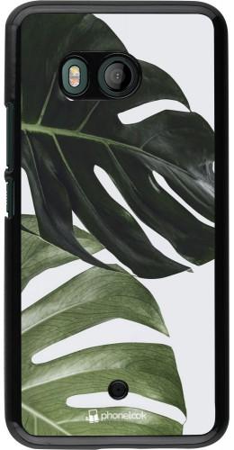 Coque HTC U11 - Monstera Plant