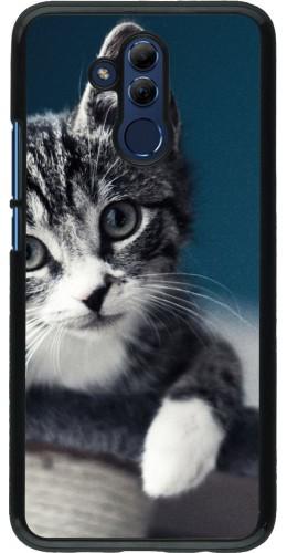 Coque Huawei Mate 20 Lite - Meow 23