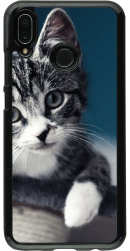 Coque Huawei P20 Lite - Meow 23