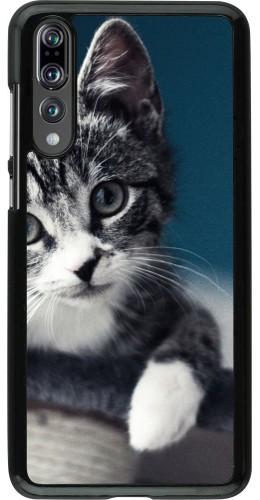 Coque Huawei P20 Pro - Meow 23