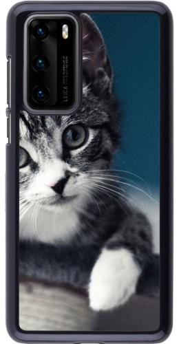Coque Huawei P40 - Meow 23