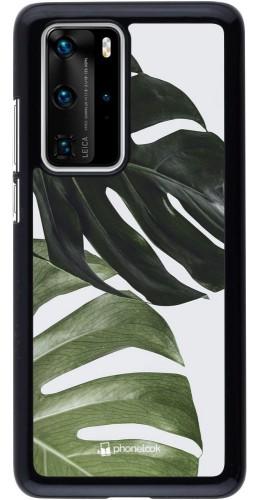 Coque Huawei P40 Pro - Monstera Plant