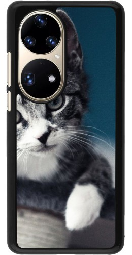 Coque Huawei P50 Pro - Meow 23