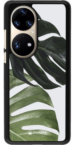 Coque Huawei P50 Pro - Monstera Plant