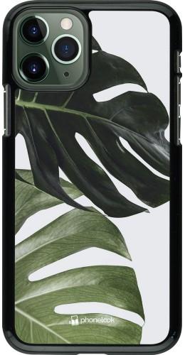 Coque iPhone 11 Pro - Monstera Plant