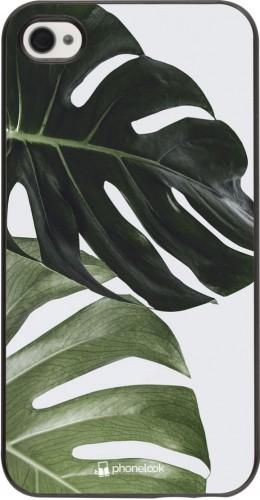 Coque iPhone 4/4s - Monstera Plant
