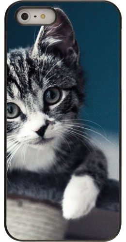 Coque iPhone 5/5s/SE - Meow 23