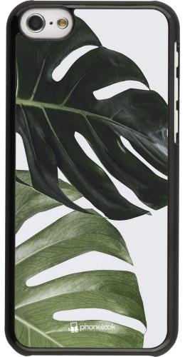 Coque iPhone 5c - Monstera Plant