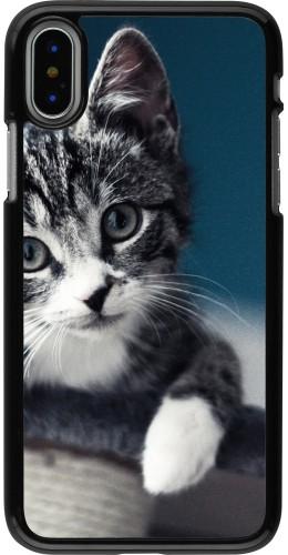Coque iPhone X - Meow 23