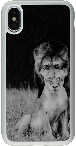 Coque iPhone X / Xs - Silicone rigide transparent Angry lions