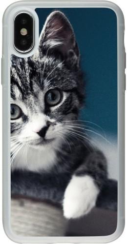 Coque iPhone X / Xs - Silicone rigide transparent Meow 23