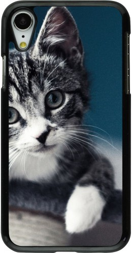 Coque iPhone Xr - Meow 23