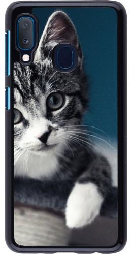 Coque Samsung Galaxy A20e - Meow 23