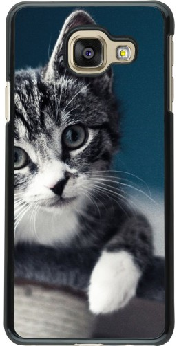 Coque Galaxy A3 (2016) - Meow 23