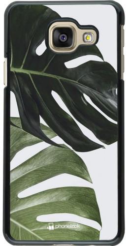 Coque Samsung Galaxy A3 (2016) - Monstera Plant