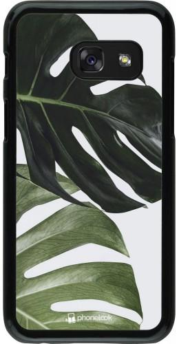 Coque Samsung Galaxy A3 (2017) - Monstera Plant