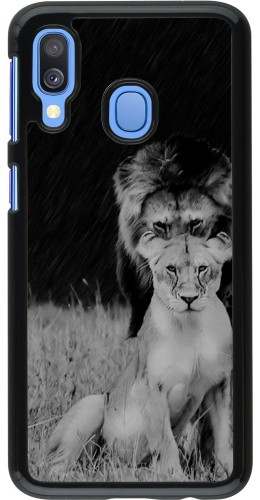 Coque Samsung Galaxy A40 - Angry lions