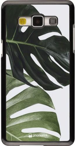 Coque Samsung Galaxy A5 (2015) - Monstera Plant