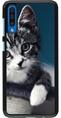 Coque Samsung Galaxy A50 - Meow 23