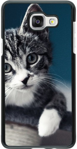 Coque Galaxy A5 (2016) - Meow 23