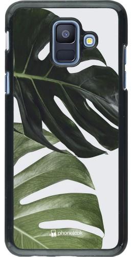 Coque Samsung Galaxy A6 - Monstera Plant