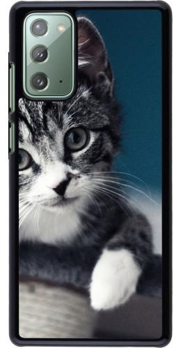 Coque Samsung Galaxy Note 20 - Meow 23
