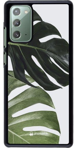 Coque Samsung Galaxy Note 20 - Monstera Plant