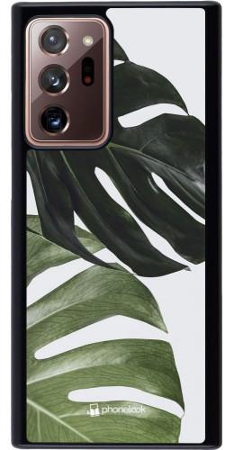 Coque Samsung Galaxy Note 20 Ultra - Monstera Plant