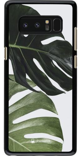 Coque Samsung Galaxy Note8 - Monstera Plant