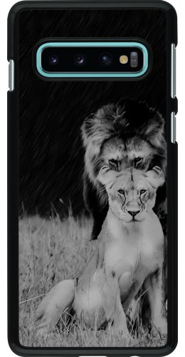 Coque Samsung Galaxy S10 - Angry lions