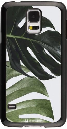 Coque Samsung Galaxy S5 - Monstera Plant