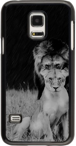 Coque Galaxy S5 Mini - Angry lions