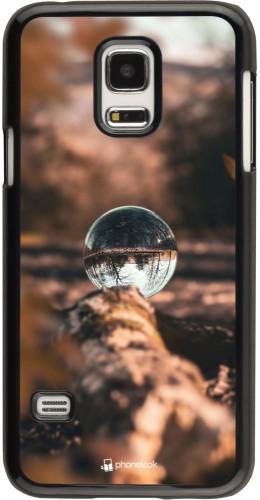 Coque Samsung Galaxy S5 Mini - Autumn 21 Sphere