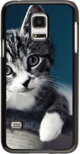 Coque Galaxy S5 Mini - Meow 23