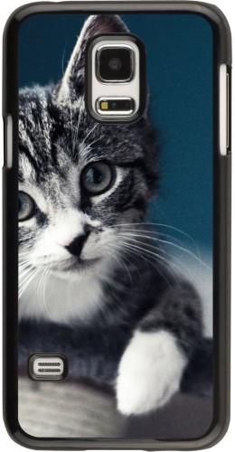 Coque Samsung Galaxy S5 Mini - Meow 23