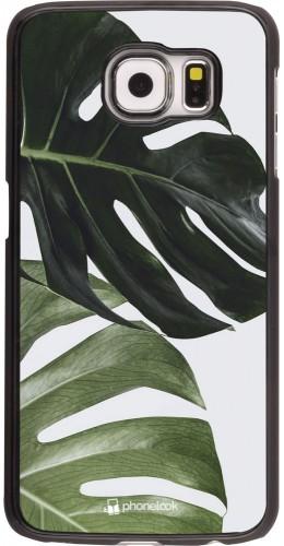 Coque Samsung Galaxy S6 edge - Monstera Plant