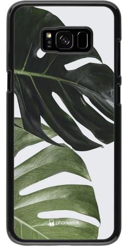 Coque Samsung Galaxy S8+ - Monstera Plant