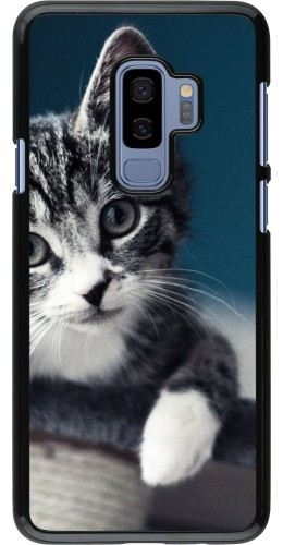 Coque Samsung Galaxy S9+ - Meow 23
