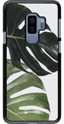 Coque Samsung Galaxy S9+ - Monstera Plant