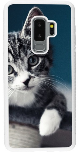 Coque Samsung Galaxy S9+ - Silicone rigide blanc Meow 23